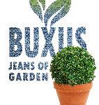 buxus logo