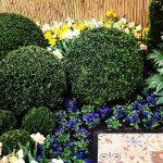 Tuin (verbouwing) Keukenhof